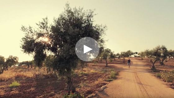Alentejo video screen grab photo